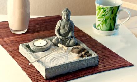 Feng Shui Start: recenze online kurzu
