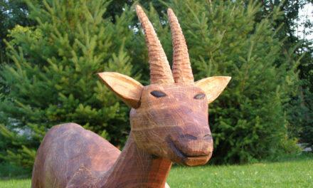 Jaké jsou rysy dřevěné sochy vyřezávané motorovou pilou?