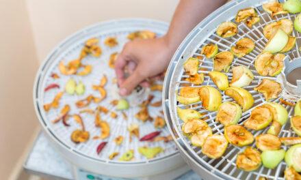 Jak vybrat sušičku potravin pro zdravé a efektivní sušení